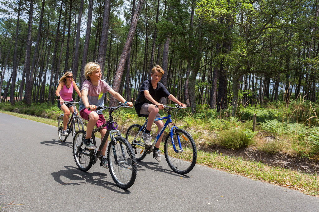 Vélodyssée, grande route à vélo qui permet de longer la côte atlantique à vélo en toute sécurité.