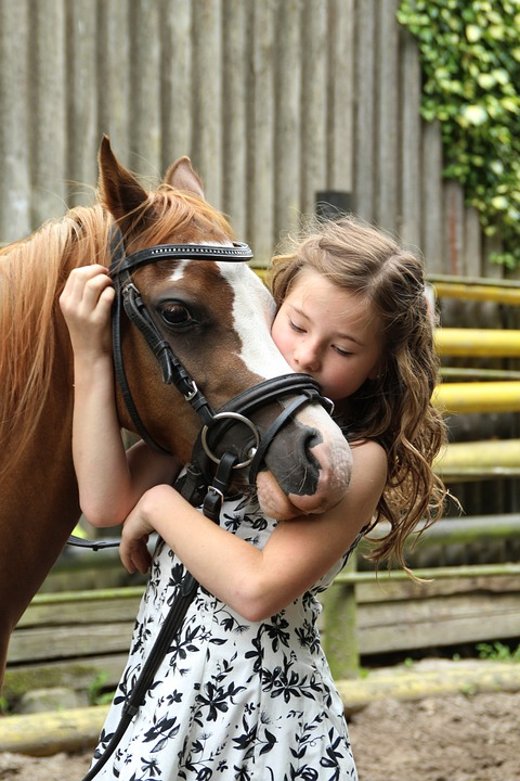 Centros de equitación